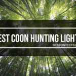 Best Coon Hunting Lights 2017 – Getting best for your money
