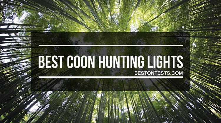 The 8 Best Coon Hunting Lights In 2019 Which Would Be