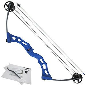 Bowfishing bow for sale