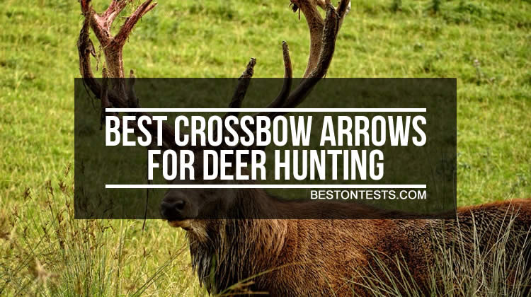 Best Crossbow Arrows For Deer Hunting - Top And Budget Option