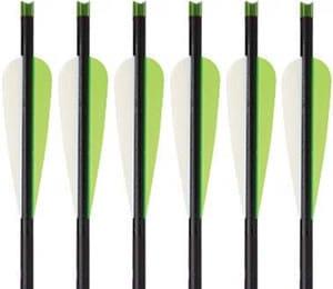 Carbon Express PileDrivers