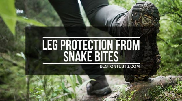 Leg Protection from Snake Bites – 4 Ways to Protect Your Legs