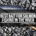 Best Bait for Salmon Fishing in the River [Lure recommendation included]