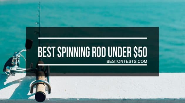 Best Spinning Rod Under 50 dollars: Detailed Reviews Included
