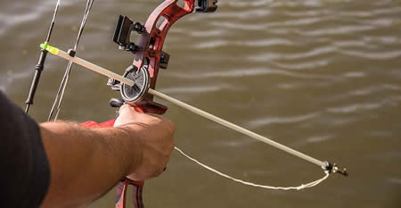 Left-handed bowfishing bow