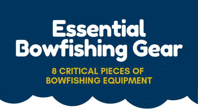 Essential Bowfishing Gear: The 8 Critical Pieces of Bowfishing Equipment